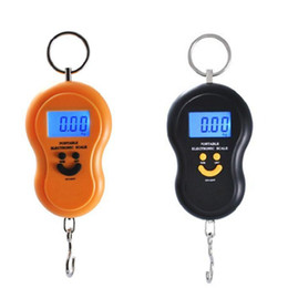 Wholesale Fishing Weights Wholesale - Wholesale-hot selling new Portable 50kg 5g LCD Digital Fish Hanging Luggage Weight Hook Scale Healthy Families