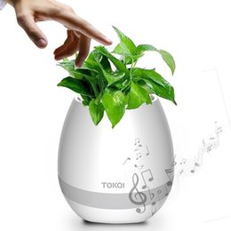 Wholesale Lead Planters - Smart Bluetooth Music Flower Pot Planter Speaker Play Piano on a Real Plant LED Colorful Night Light Touch Music Plant Lamp Rechargeable