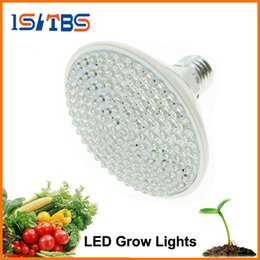 Wholesale Led Lights For Aquarium Plants - LED Grow Light AC220V 2W 5W 7W E27 Red Blue LED Plant Growth Light for Indoor Plants or Aquarium.