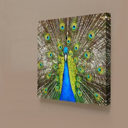 Wholesale Peacock Painting Framed - 1 Panels Peacock Painting Home Decor Wall Art Picture Digital Art Print Canvas Printed Picture for Living Room