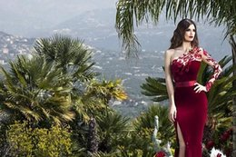 Wholesale Long Sleeved Evening Gowns - 2017 Muslim style red velvet Arabian evening gown with a one-shouldered lace applique skirt, a long sleeved dress, KL7412