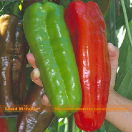 Wholesale Sweet Packing - 100% Germinate Giant Pepper Seeds, 100 Seeds Pack, New Hybrid Variety Marconi Vegetable Pepper Sweet Chili
