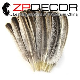 Wholesale Beautiful Crafts - ZPDECOR feathers 35-30 cm 100 pcs lot Premium Handpicked NATURAL Beautiful Wild Turkey Wing Feathers For Craft Design DIY