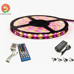 Wholesale Holiday Driver - Led RGBW RGBWW 5050 Led Strips Lights 60leds M 5M Roll Waterproof Non-Waterproof +Remote Controller + Driver Adapter With EU AU UK US Plug