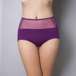Wholesale Woman Lingeries Xl - 2 Sizes Women Underpants Mesh Panties Sheer Sexy Briefs High Waist Sexy Seamless Underwear Undies Hiphuggers Lingeries