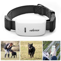 Wholesale Small Hand Held Gps - Fashion Mini Free Online Tracking Device Real Time GPS Tracker LK909 with Collar for Small Pet Dog Cat Tracking System