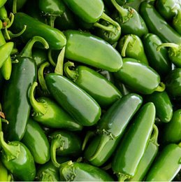 Wholesale Vegetable Fast - Free Shipping,100 Jalapeno Chile Pepper seeds Fast Growing DIY Home Garden Vegetable Plant, most popular pepper