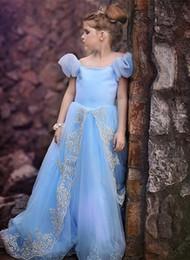Wholesale Sky Blue Girls Flower Dresses - Lovely Design Golden Appliques Sky Blue Flower Girl Dresses Christmas 2017 First Communion Dresses Elegant Girls Pageant Prom Gowns