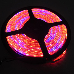 Wholesale Led Round Grow Light - DC12V waterproof LED Plant Grow Lights 60leds m 5050 LED Strip Tape Red Blue 3:1, 4:1, 5:1,for Greenhouse Hydroponic Plant Flower Growing