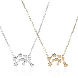 Wholesale Wholesale Zodiac Necklaces - Wholesale-New 2016 Fashion Aquarius Zodiac Signs Astrology Necklace Trendy Constellation Star Pendant Party Necklaces for Women -N165