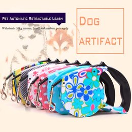 Wholesale Dog Retractable Leash 5m - Recommend All Seasons Pet Automatic Retractable and Cat Are Suitable for Traction Rope Printing Design Nylon Pull dog Leashes 5M 12color