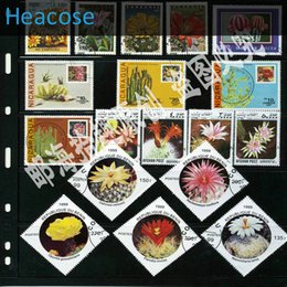 Wholesale Different Stamps - Wholesale- 50 pieces desert plants postage stamps all different used brands label, selos marca carimbo franqueo marca matasellos collection
