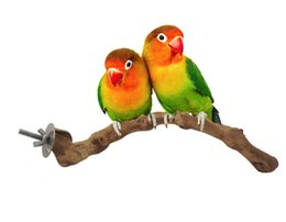 Wholesale Parrot Accessories - Pet birds cage accessories Vines birds standing poles parrots toy birds large standing bars