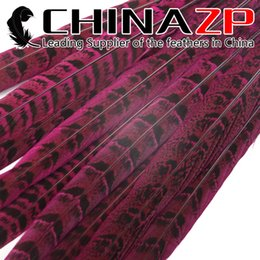 Wholesale Pink Feathers Craft - Gold Manufacturer CHINAZP Crafts Factory 50 pieces lot 30-35cm(12-14inch) Directly Dyed Hot Pink Ringneck Pheasant Tail Feathers