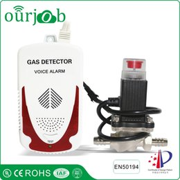 Wholesale Gas Solenoid Valve - LPG Natural Gas Alarm Combustible Gas Leak Detector with Two Nozzle Hose Solenoid Valve