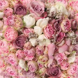 Wholesale Floraison Blanc Rose Roses Photographie Arrière plans Numérique Imprimé Enfants Enfants Mariage Fleur Mur Photo Studio Décors Vinyle Tissu