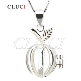 Wholesale apple locket - Fashion Jewelry 3pcs sterling silver Apple Shape locket pendant 23.6*13.3*10.4mm Free Shipment