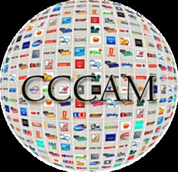 Wholesale Decoder Hd - 1 Year CCcam Europe 3 Cline Server HD 12 Months account for Spain UK Germany French Italy Poland Satellite Decoder with AV Cable