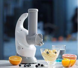 Wholesale Ice Cream Machines - Fruit Salad Ice Cream Machine DIY Homemade Hole Modeling Of 2 Shapes