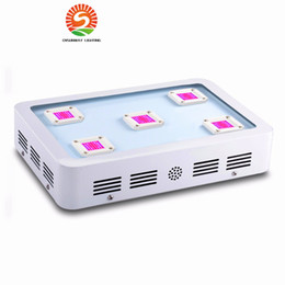 Wholesale Lamp Medical - Sunway X5 1500W LED Grow light Full Spectrum led grow lights For Plants indoor Growing Flowering greenhouse houseplant medical grow lamp
