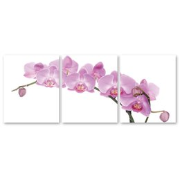 Wholesale Images Abstract - ARTPIONEER 3 Modern painting the canvas panel printed image of phalaenopsis flower art home decor wall pictures for the living room No frame