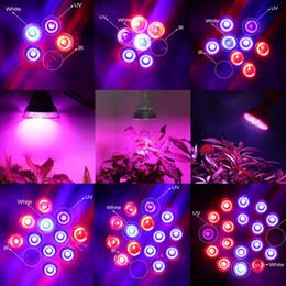 Wholesale E27 27w Led - Full Spectrum LED Grow Lights 15W 21W 27W 36W 45W 54W E27 LED Grow Lamp Bulb For Flower Plant Hydroponics System
