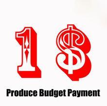 Producte Budget Payment / Remplissez la différence d'affranchissement / prix ? partir de fabricateur