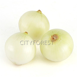 Wholesale Bonsai White - 100 Pcs White Onion Vegetable Seeds Non-GMO Easy-to-grow DIY Home Garden Bonsai Container Vegetable