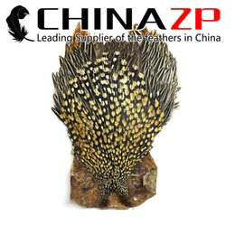 Wholesale Complete Costume - Leading Supplier CHINAZP Premium Quality Natural Gold Jungle Cock Cape Complete Skin Pelt With Feather Wholesale