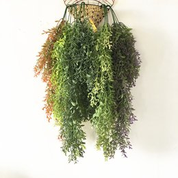 Wholesale Planting Bean Sprouts - Free shipping simulation plant rattan gale bean sprouts hanging green aquatic plants plastic hanging flowers rattan wall home channel decora