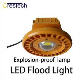Wholesale led outside - Dustproof waterproof explosionproof lamp with 35mil LED chip bridgelux IP65 waterproof outside using suitable gas station