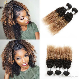 Wholesale Blonde Human Braiding Hair - Ombre blonde Kinky Jeery Afro Curly Hair Extension Malaysian Peruvian Brazilian Human Raw Hair Ombre Braiding Hair 2Tone Black Brown Blonde
