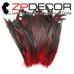 Wholesale Wholesale Bulk Sales - Manufacturer ZPDECOR Exporting 25-30cm(10-12inch) 100pcs lot Excellent Quality Dyed Partly 9 Colors Cock Feathers for bulk Sale
