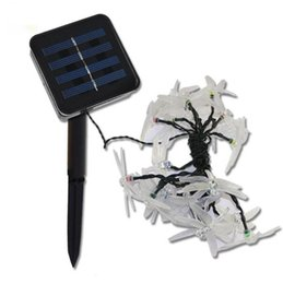 Wholesale Solar Led Strip Lights - Outdoor Solar Led String light 5M 20 Led dragonfly solar panel strip light IP65 Waterproof Garden square decoration