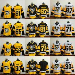 Wholesale Sidney Crosby Cheap Jersey - Cheap Hockey Jerseys Men's Pittsburgh #87 Sidney Crosby #58 Kris Letang #81 Phil Kessel #71 Evgeni Malkin 2017 Stadium Series Jersey