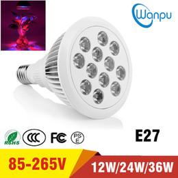 12w ha portato a crescere la lampadina Sconti LED Grow Light E27 12W 24W 36W RedBlue 1200LM Lampade per piante Alluminio Lampadine da coltivazione Giardino Impianto a serra Illuminazione a Led