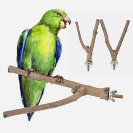 Wholesale Perch Stand - 2017 New Raw Wood Pet Parrot Stand Rack Toy Y Shape Branch Parakeet Budgie Hanging Perches Toy for Bird Cage