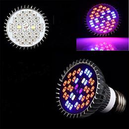 Full Spectrum 40 LED E27 LED Planta de cultivo Bombillas hidropónicas ligeras Lámparas UV Luces IR desde fabricantes