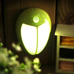 2019 luce sensata umana Beetle Infrared Human Sensing Luce diurna Regalo Animal Style Aisle Study Comodino Creative Fiaba World 3D Light luce sensata umana economici