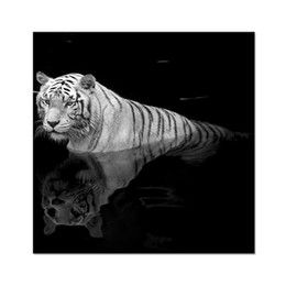 Wholesale Tiger Paintings Canvas - White Tiger in the Water Canvas Painting Wild Animal Canvas Wall Decor Unframed Canvas Printing Artwork