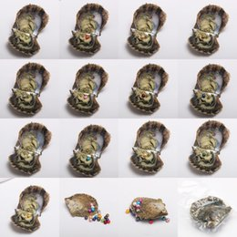 Wholesale Love Pearl Oyster - Akoya Oyster with AAA+ Grade 6-7 mm Round Multicolored Freshwater Wish Pearl Vacuum Package for Kids Party Fun Gifts