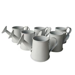 Wholesale White Metal Buckets - Wholesale cheap Mini Small smart Decorative watering cans Wedding favor bucket tin box Iron pots Easter eggs pots