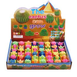 Pianta da appartamento Grow Toys Cactus Soaking Plant Expansion Kids Novità Giocattoli educativi Bambini Compleanno Xmas Festival Gifts DHL 504 gratis da scatole di soldi del gatto all'ingrosso fornitori