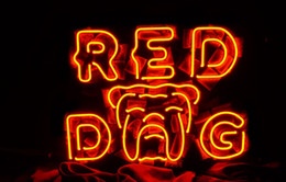 Wholesale Red Dog Sign - New Tat tire Neon Beer Sign Bar Sign Real Glass Neon Light Beer Sign ME 189-RED DOG 16x15