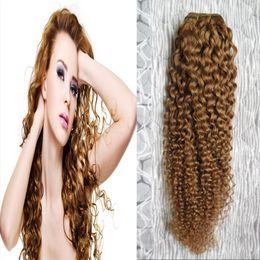 2019 блондинка афро переплетения Мед блондинка монгольский афро кудрявый вьющиеся волосы плетение пучки 100 г Мед блондинка Non-Реми человеческих волос плетение скидка блондинка афро переплетения