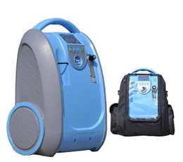Wholesale 5L Portable Adjustable Oxygen Concentrator with AC110 V Plug and Rechargeable Li Battery and Car Adapter