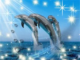 Hand diy diamant malerei kreuzstich kits voller harz platz diamant stickerei mosaik wohnkultur tier delphin zxh0216 von Fabrikanten