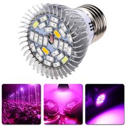 Wholesale E27 Blue - Full Spectrum 28W E27 LED Grow Light Kit Hydroponics Plant Veg Flower Lamp Blubs