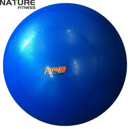 Wholesale 65cm Yoga Ball - Wholesale-Nature Fitness65cm Gymnastic Fitness Pilates Balance Exercise Gym Fit Yoga Core Ball Indoor Fitness Training Yoga Ball free pump