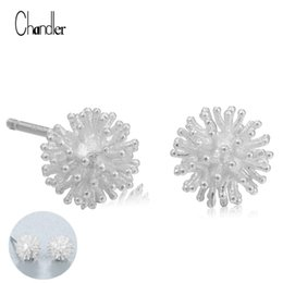 Wholesale Tiny Silver Balls - 925 Sterling Silver fireworks Flower Stud Earrings Beautiful Tiny Sparkling Ball Charm Bijoux Punk Pendientes Plata brincos Gift